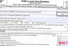 2020 - 2021 Schedule C Profit or Loss From Business